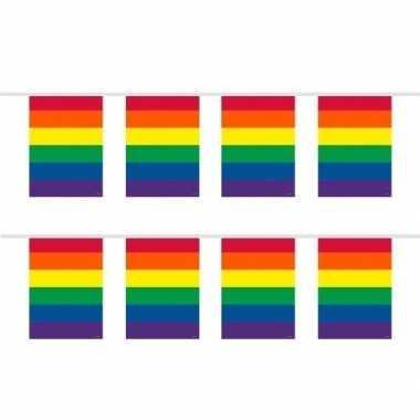 2x stuks slingers in regenboog kleuren 10 meter