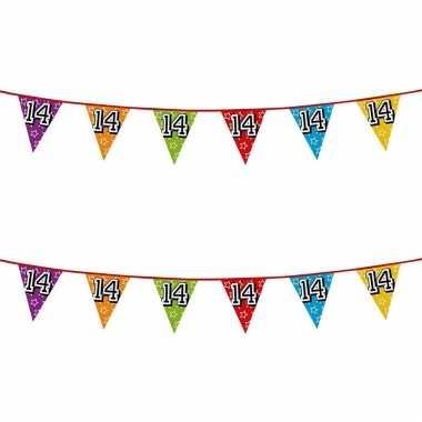 2x stuks vlaggenlijnen glitters 14 jaar thema feestartikelen