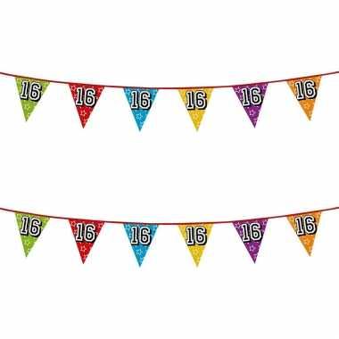 2x stuks vlaggenlijnen glitters 16 jaar thema feestartikelen