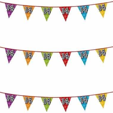3x stuks vlaggenlijnen glitters 14 jaar thema feestartikelen