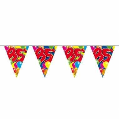 85e verjaardag slingers / vlaggenlijnen 10m