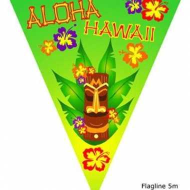 Aloha vlaggenlijn 5 meter