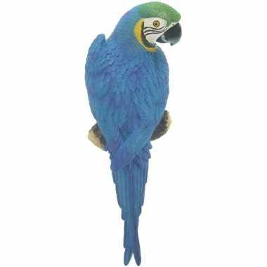 Blauwe decoratie ara papegaaien 31 cm dierenbeelden/tuinbeelden