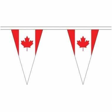 Canadese landen versiering vlaggetjes 20 meter