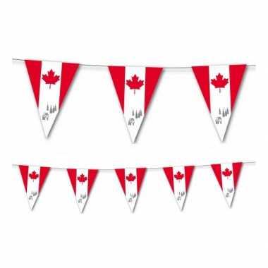 Canadese slingers 3,5 meter