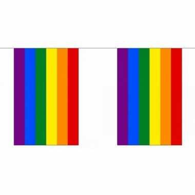 Gay parade regenboog slingers 9 m