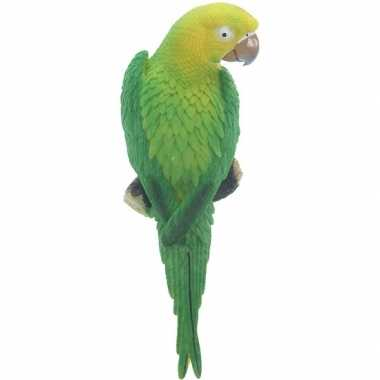 Groene decoratie ara papegaaien 31 cm dierenbeelden/tuinbeelden