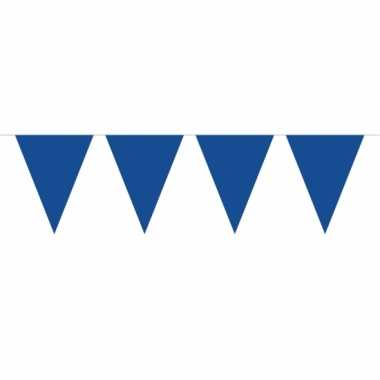 Groot formaat blauwe slingers