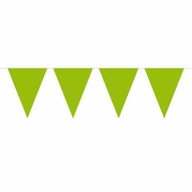 Groot formaat lime groene slingers