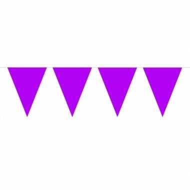 Groot formaat paarse slingers