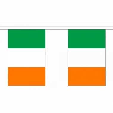 Ierland vlaggenlijnen 10036632