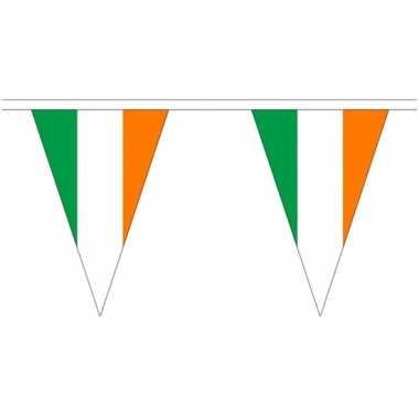 Ierse landen versiering vlaggetjes 5 meter