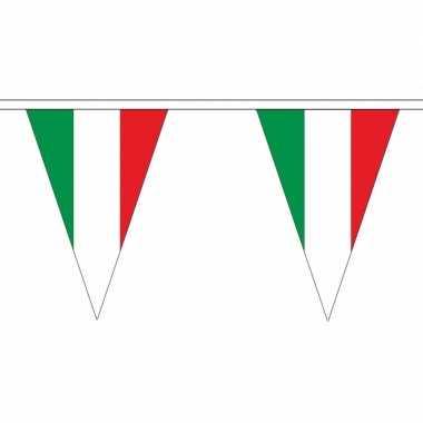 Italie versiering vlaggenlijn 20 m