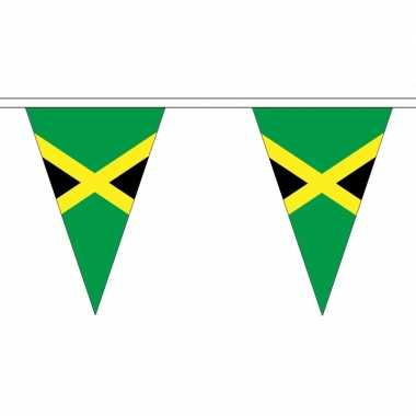 Jamaica versiering vlaggenlijn 5 m