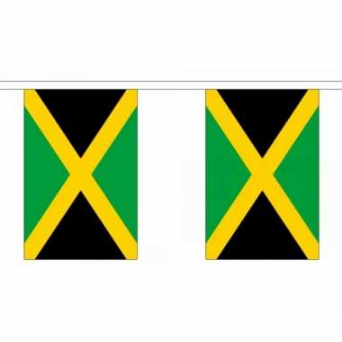 Jamaica vlaggenlijnen
