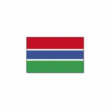 Landen vlag gambia