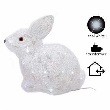 Lichtgevend konijn kerstverlichting 30 cm