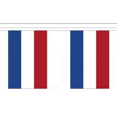 Luxe holland vlaggenlijn 9 meter