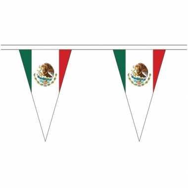 Mexicaanse landen versiering vlaggetjes 5 meter