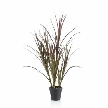 Nep hoog gras plant groen in pot voor buiten/outdoor
