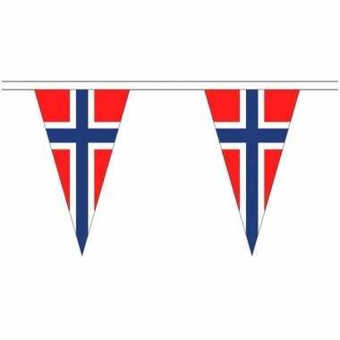 Noorse landen versiering vlaggetjes 5 meter