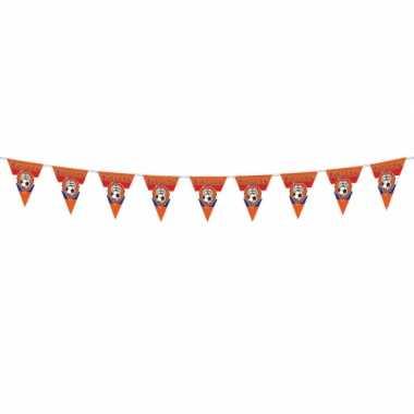 Oranje vlaggenlijnen met leeuw 10 meter