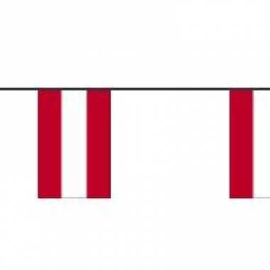 Papieren vlaggenlijnen oostenrijk
