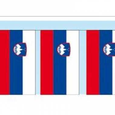 Papieren vlaggenlijnen slovenie