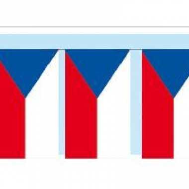 Papieren vlaggenlijnen tsjechie