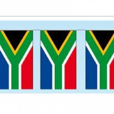 Papieren vlaggenlijnen zuid-afrika