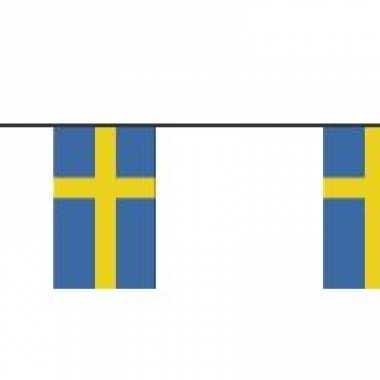 Papieren vlaggenlijnen zweden