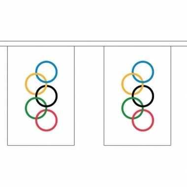 Polyester slinger olympische vlag 3 m
