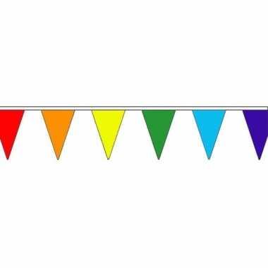 Regenboog versiering vlaggenlijn 20 m