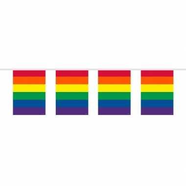 Slinger in regenboog kleuren 10 meter