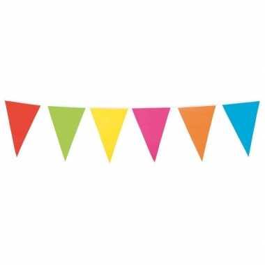 Vlaggetjes lijn in vrolijke kleuren 10 meter