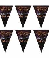 2x halloween decoratie vlaggenlijn met pompoenen 250 cm