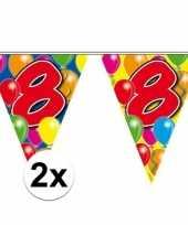 2x leeftijd vlaggenlijnen 8 jaar 10 meter