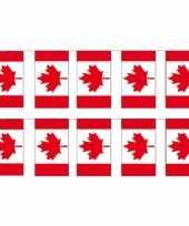 2x papieren vlaggenlijnen canada