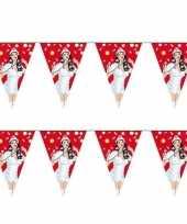 4x stuks verpleegkundigen zusters thema vlaggenlijnen
