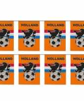 6x stuks vlaggenlijnen vlaggetjes oranje holland voetbal thema 10 meter