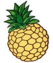 Funny buitenkleed ananas 120 x 170 cm