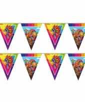 Set van 2x stuks indianen verjaardag thema vlaggenlijn 10 meter